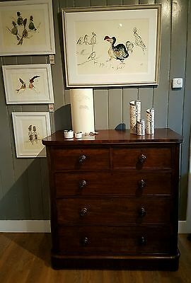 Antique Victorian Mahogany Chest Of Drawers, Original Vintage