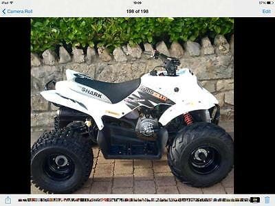 Quadzilla Pro Shark 100cc Quad Bike 2 stroke liquid cooled 100cc Auto 2012