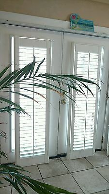"Interior Solid Wood Plantation Shutters White 2 1/2"" Louvers"