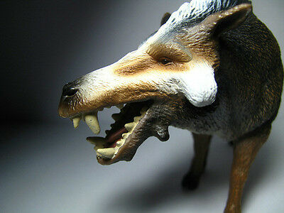 2015 New Collecta Dinosaur Toy / Figure Daeodon