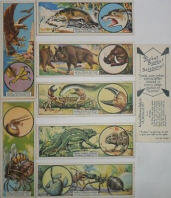 TYPHOO *ANIMAL OFFENCE AND DEFENCE* 1928 Pt.Set 8/25 *VG*