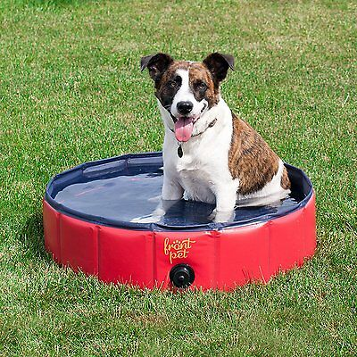 "Frontpet Foldable Dog Pet Pool Bathing Tub 32"" X 32"" X 8"""