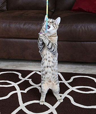CAT DANCER PRODUCTS 301 Charmer Interactive Toy