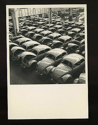 Peter Keetman The Volkswagon Beetle Warehouse 1953 Vintage Photo Postcard