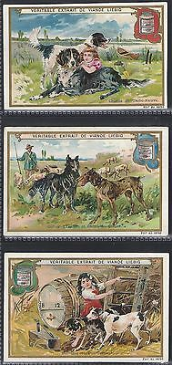 Liebig-*s0615*-Full Set Of 6 Cards- Belgium - Breeds Of Dogs I