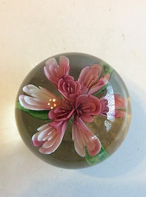 Glass Paperweight With Multi Coloured Pink Flower With Green Leaves