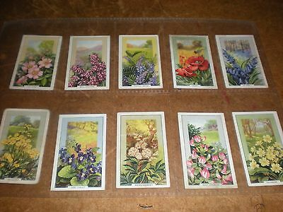 1939 gallaher  wild flowers  cigarette cards set of 48