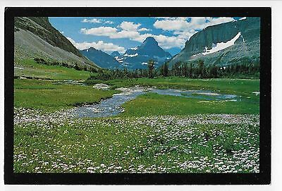 Postcard of MOUNT REYNOLDS IN GLACIER NATIONAL PARK - 4X6 Inches