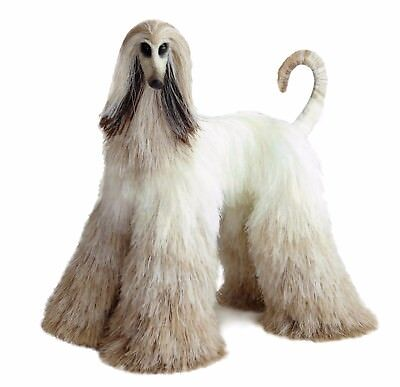 Collectibles Animals, blonde afghan hound, cute plush toy, stuffed animals,