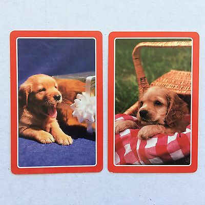 Vintage Swap / Playing Card Pair - Gorgeous Puppies / Dogs