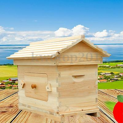 Wooden Beehive Auto Flow Frame Honey Box House Beekeeping Bee Hive Equipment