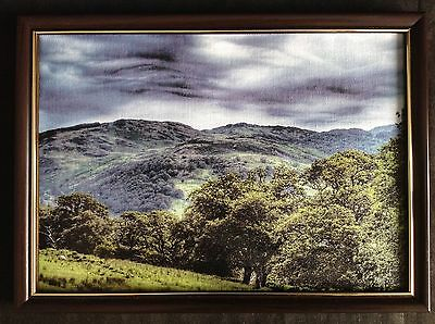 The Lonely Sheep Framed Canvas Print On Board Landscape A4 Artist Signed
