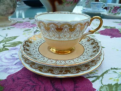 Pretty Vintage Shelley China Trio Tea Cup Saucer Plate Peach Gilded 12839