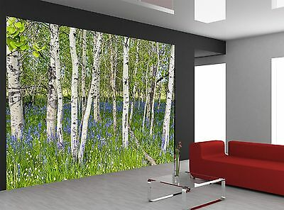 Aspen Forest Wall Mural Photo Wallpaper GIANT WALL DECOR Paper Poster Free Paste
