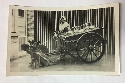 1933 Chicago Worlds Fair Belgium Flemish Milkmaid and Cart Real Photo Postcard