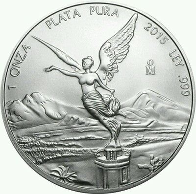 2015 Mexican libertad. 999 silver, 1 troy oz.