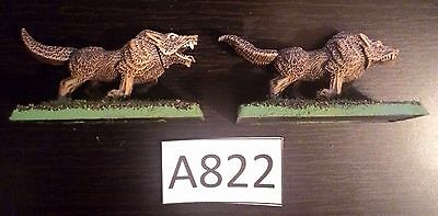 A822 Warhammer Wolves (2 - Plastic)
