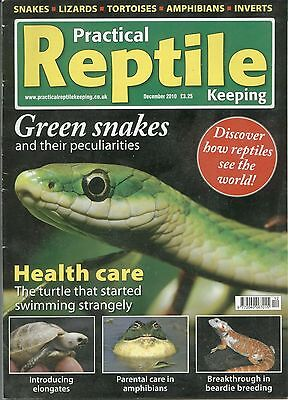 Practical Reptile Keeping Magazine December 2010 Green Snakes