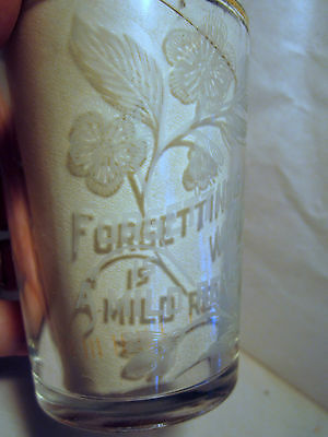 etched Victorian Tumbler drinking glass Forgetting a wrong is a Mild Revenge