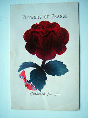 Flowers Of France - Gathered For You.