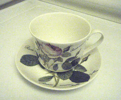 Roy Kirkham Redoute Roses Breakfast Cup And Saucer