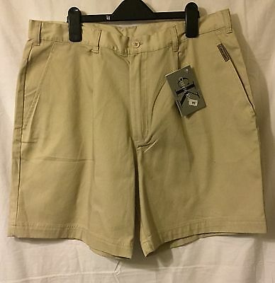 "New Calvin Klein Mens Knee-length Chino Shorts - Kharki 34"" waist"