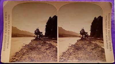 """Stereoview by F. J. Haynes """"Down the Columbia at Cascades"""" Large Format"""