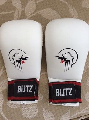 martial arts mitts/ gloves
