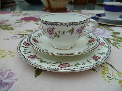 Pretty Vintage / Antique Aynsley English China Trio Tea Cup Saucer Plate 3113