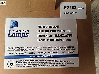 Diamond Lamp E2183 Projector Lamp & Housing