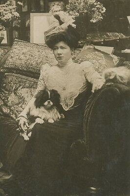 Antique Photo~Japanese Chin Dog on Lap of Pretty Victorian Lady~ NEW Note Cards