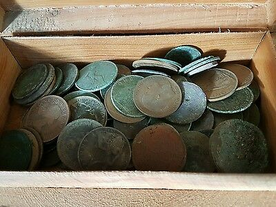 metal detecting finds coins