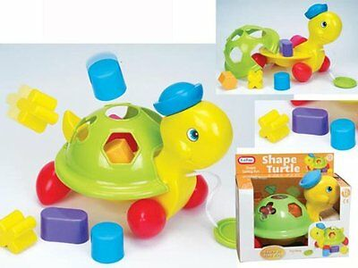 Fun Time Pull Along Shape Turtle new