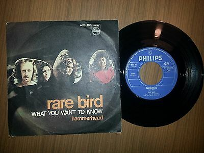 Rare Bird What You Want To Know / Hammerhead 45 Giri 7 Mint