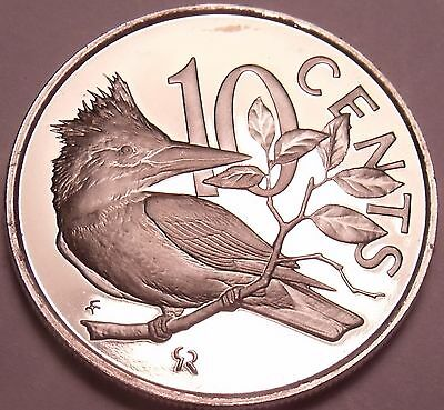 British Virgin Islands 10 Cents, 1975 Proof~Only 32,000 Minted~Kingfisher~Fr/Shi