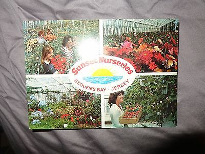 PPC  SUNSET NURSERIES  ST OUENS BAY Jersey Postcard C1980 by BERIC TEMPEST  V/S