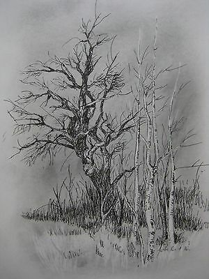 Graphite and Ball Point Pen Drawing Original Art A4 Signed