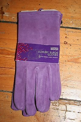 M&S purple luxury soft suede women's gloves size medium / large new with tags