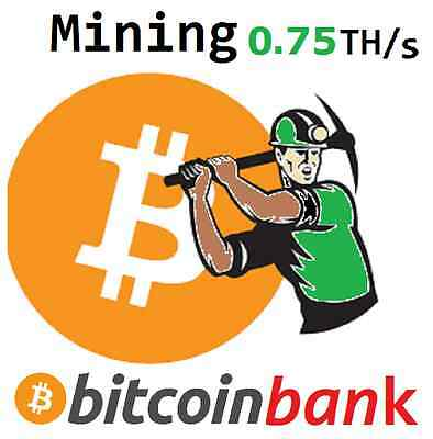 BITCOIN MINING 0.75TH/s 6-Month Contract 0.114 BTC Digital-Coin Crypto-Currency