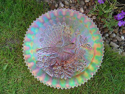 Northwood Carnival Glass Peacock on Fence Stippled Pastel Marigold Plate- Superb