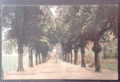 Vintage Postcard,the Walks,kings Lynn.