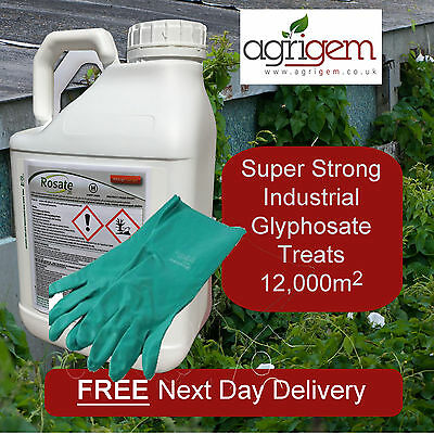 Professional Weed Killer Rosate 360 Tf Kill Grass And Broadleaf Weed 5L Gloves