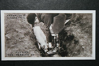 Worcestershire Foxhounds  Vintage 1920's Photo Card  VGC / EXC