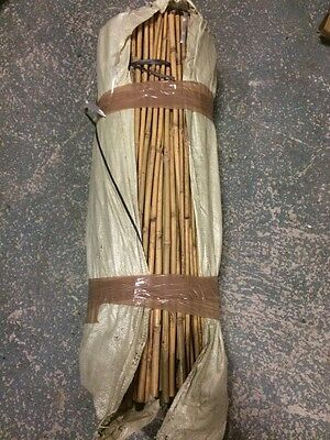 250 X 3Ft  Bamboo Canes Tonkin  Strong  Garden Plant Support Sticks