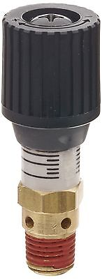 Control Devices CR Series Brass Pressure Relief Valve, 0-100 psi Adjustable Pres