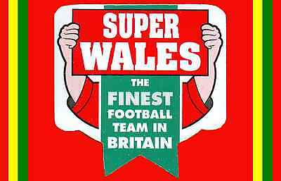 FRIDGE MAGNET Z WALES SUPER FINEST FOOTBALL TEAM IN BRITAIN, 7x4.5mm CYMRU, NEW