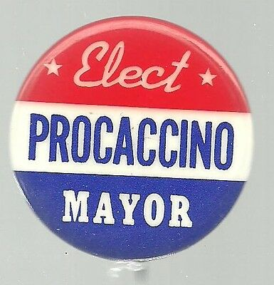 Elect Procaccino Mayor New York City Political Campaign Pin