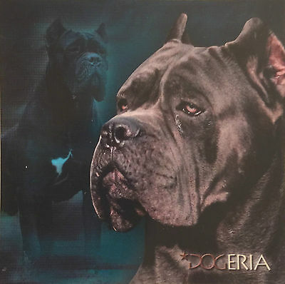 Cane Corso Magnetic Picture / Coaster  Large 50 mm X 50mm Size