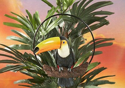 Toucan Statue on Ring Perch Resin Colorful Tropical Tiki Luau Beach Decor #8260