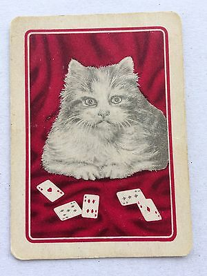 Vintage Swap / Playing Card - Fluffy Cat & Playing Cards - Wide